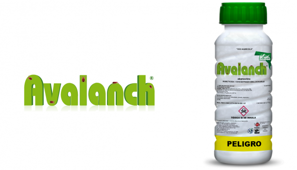 avalanch-insecticida