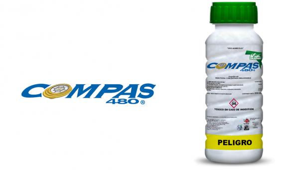 compas480-insecticida