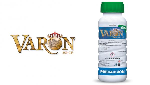 varon-fungicida