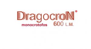 dragocron