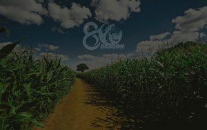 banner-conocenos3