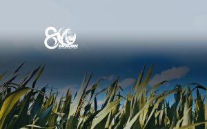 banner-conocenos4
