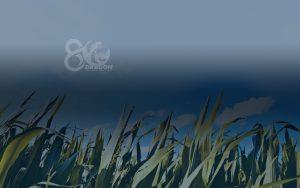banner-conocenos5