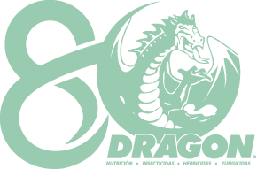 banner2-1