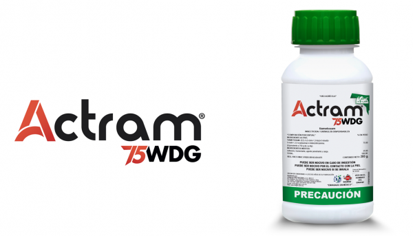 insecticida-actram