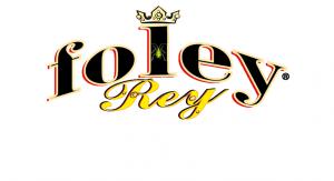 FOLEY_REY_INS_ok