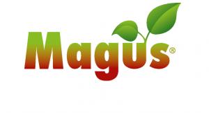 MAGUS_NUT_OK