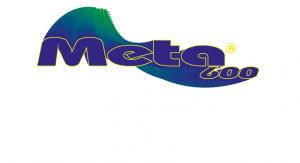 META_600_INS_OK