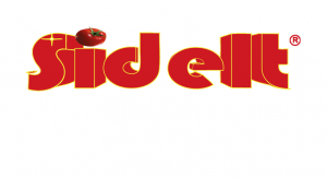 SIDELT_INS_ok