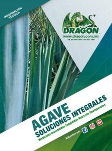 soluciones-agave