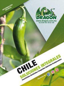 soluciones-chile